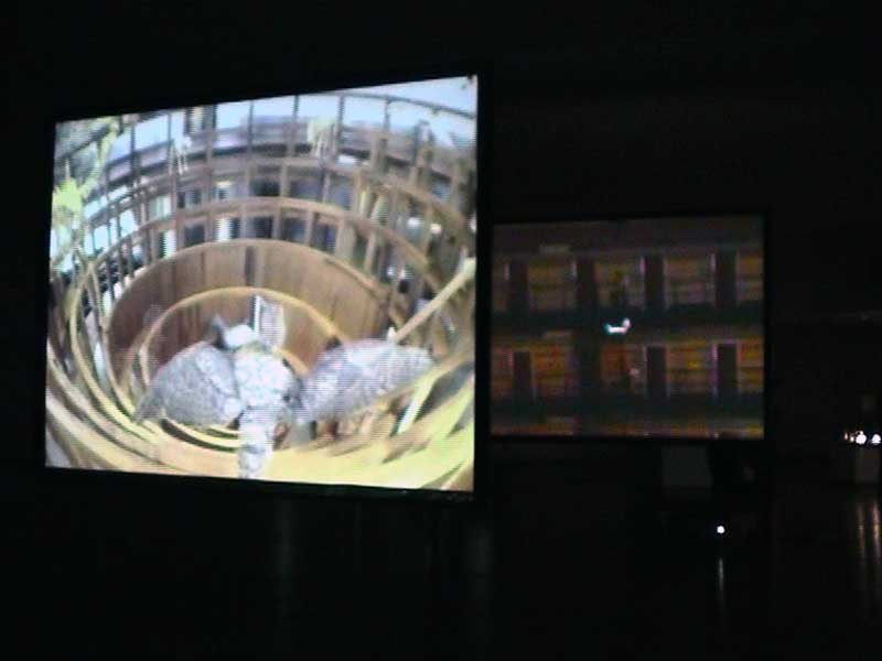 Anatomic Panopticon (2006)